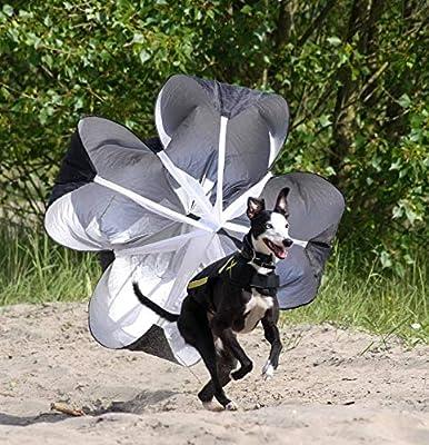 Xdog Vest Parachute