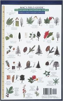 Descargar Libro Acadia National Park (mac's Guides (paperback)) PDF
