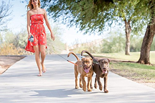 WIGZI Dual Doggie 2 Dog Retractable Leash, 50 pounds per Dog Leash