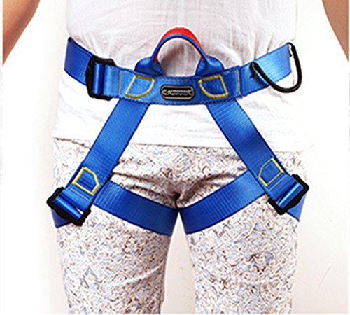 Climbing Harness, Half Body and Half body Harness, Safe Belts Guide Harness For Outward Band Expanding Training, Caving Rock Climbing Rappelling Equip, Safety Comfort (blue)