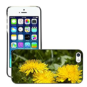Hot Style Cell Phone PC Hard Case Cover // M00309574 Spring Flowers Plant Flower Yellow // Apple iPhone 5 5S 5G