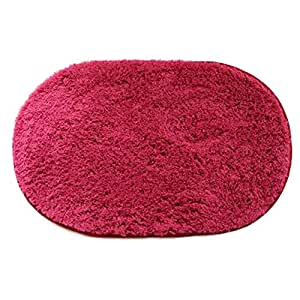 Dustproof Nonslip Doormat Entrance Rug Entry Mat Floor Mats, Rose red