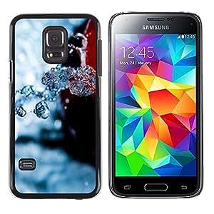 Caucho caso de Shell duro de la cubierta de accesorios de protección BY RAYDREAMMM - Samsung Galaxy S5 Mini, SM-G800 - Nature Beautiful Forrest Green 108