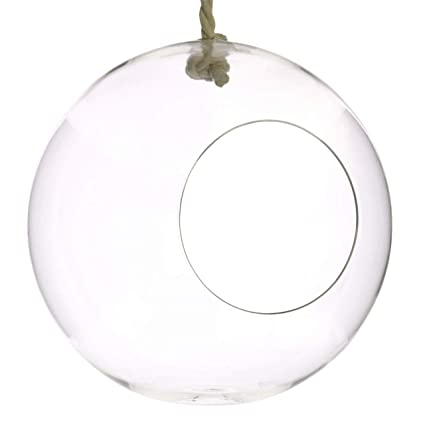 Amazon Com My Swanky Home Clear Round Hanging Bubble Ornament