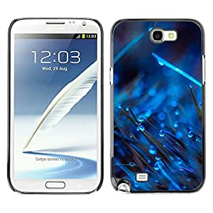 A-type Arte & diseño plástico duro Fundas Cover Cubre Hard Case Cover para Samsung Note 2 N7100 (Gotas Azules En Hierba)