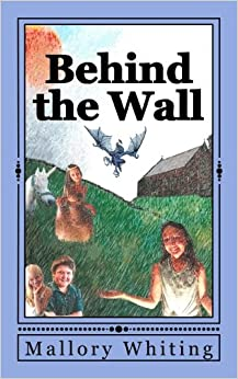 Book Behind The Wall