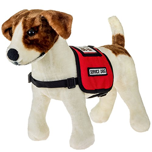 How To Get A Free Service Dog Vest