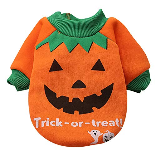 Geetobby New Halloween Pet Sweatshirts Dog Cute Fashion Orange Pumpkin Costume -