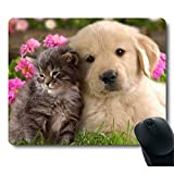 Grey Baby Cat Gold Dog Golden Puppy Cuddle Close Together Lovely Mouse Pad