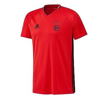2e81cecf4f3 2016-2017 Benfica Adidas Training Shirt (Red): Amazon.co.uk: Sports ...