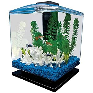1 5 gallons tough impact resistant acrylic for Amazon fish tanks