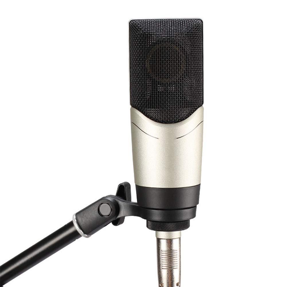 LIUGUANJIANG Grabación Profesional micrófono de Condensador ...