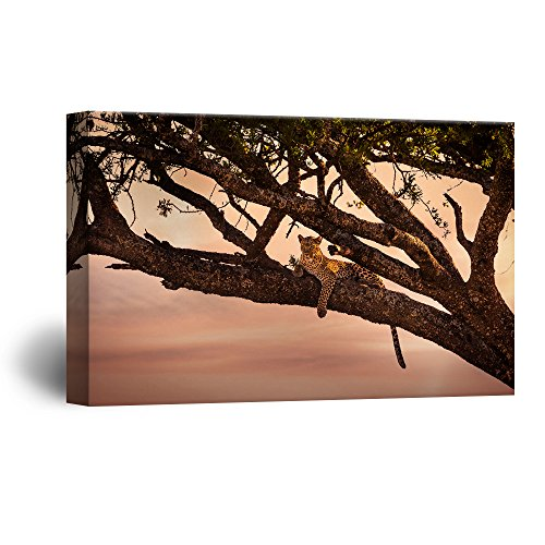 - wall26 Canvas Wall Art - A Leopard Lying on a Tree Branch - Giclee Print Gallery Wrap Modern Home Decor Ready to Hang - 16x24 inches
