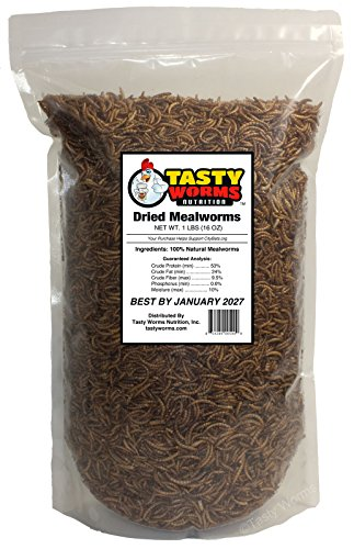 Tasty Worms Freeze Dried Mealworms, 16,000 Worms, 1 lb