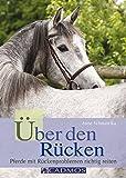 Über den Rücken: Pferde mit Rückenproblemen richtig reiten