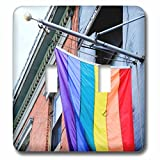 3dRose LSP_279261_2 Gay Pride Flag, City, New York. USA Toggle Switch,