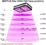 BESTVA SAMSUM Series 2000W COB LED Grow Light