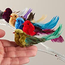 Feathered Tail Velvet Mushroom Birds In Assoreted Colors with Attached Metal Clips - 12 Birds