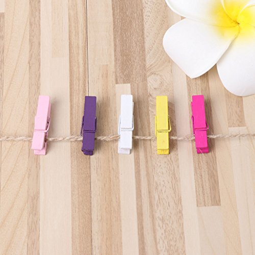 Photo Peg Pin with Mini Mollette legno pezzi Dabixx clothespin colorate Pin 20 Rope in Bvq7zqx0n