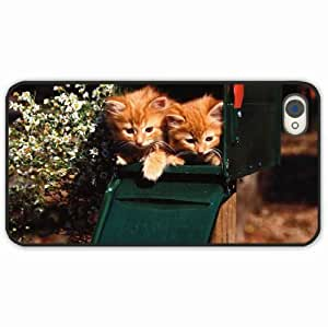 iPhone 4 4S Black Hardshell Case kittens box sitting couple Black Desin Images Protector Back Cover