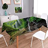 Waterfall Oblong Printed Tablecloth Waterfalls side Valley in Indonesia with Southeast Asian Bushes above Hills Flannel Tablecloth Green and Brown Size: W70'' x L120''