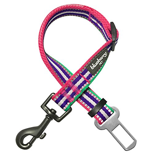 Blueberry Pet 8 Colors 3M Reflective Multi-Colored Stripe Adjustable Dog Seat Belts