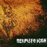 The Healing Process By Despised Icon (2006-03-01)