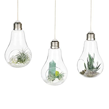 Mkono 3 pack light bulb hanging plant terrarium glass vase for succulent air plant