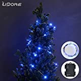 LIDORE 20.7 Ft Micro LED 60 Blue String Lights with 2 Modes(ON&TIMER). Waterproof battery box. 6AA Battery Operated. Suitable for indoor and outdoor(blue)