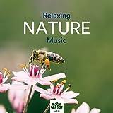 Mantra Meditation (Sound of Nature)