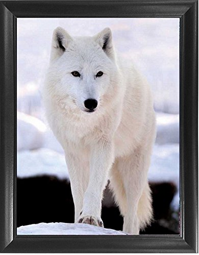 Mount Plus 3D Lenticular Picture - Unbelievable Life Like 3D Art Image, Animated Posters, Cool Art Deco, Unique Wall Art Decor, with Dozens to Choose from (3D Arctic Wolf) ()