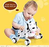SainSmart Jr. Robot Dog Smart Dog Electronic Pets Kid's Toy, Children Days Gift Remote Control Dog Toy Interactive Puppy with Immersive Sound and Humanistic Care(Black)