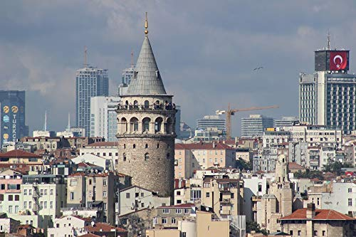 - Home Comforts Framed Art for Your Wall Peace Turkey Architecture Tower Galata Istanbul Vivid Imagery 10 x 13 Frame