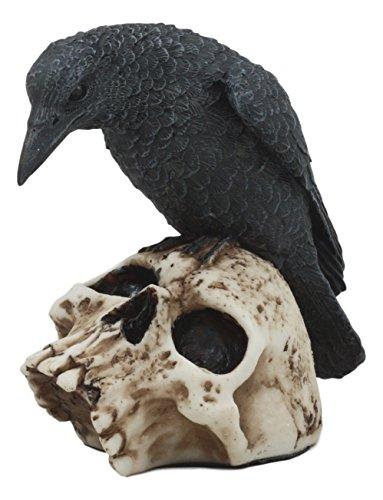 готовы помочь фото ворона на черепе его смену фундаменталисты