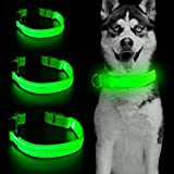 Clan_X LED Dog Collar, USB Rechargeable Glowing Pet Collar, Light Up Safety Collars Keep Your Pets Visible & Safe (L, Green)