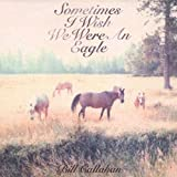 Sometimes I Wish We Were An Eagle [Vinyl]