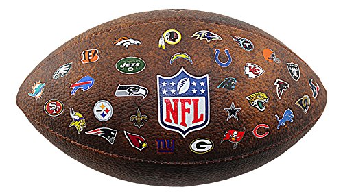 NFL 32 Team Color Logo Mini Football