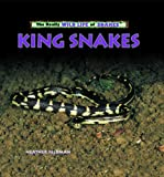 King Snakes, Heather Feldman, 0823967239
