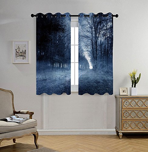 Stylish Window Curtains,Halloween,Ghostly Haunted Forest Image Bleak Gloomy Misty Nature Landscape Decorative,White Black Light Blue,2 Panel Set Window Drapes,for Living Room Bedroom Kitchen (Haunted Forest Halloween Ideas)