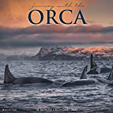 Journey With the Orca 2020 Calendar