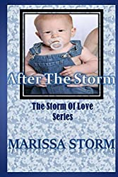 After The Storm (Storm of Love Book 4)