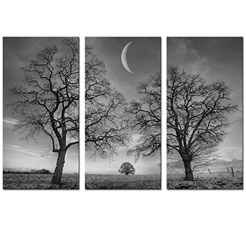 Black and White Moon Canvas Wall Art Decor,Winter Tree Forest under New Moon Canvas Painting Prints for Home Wall Decor,Framed and Stretched Canvas Home Decor,Office,Hotel Room Decor Art