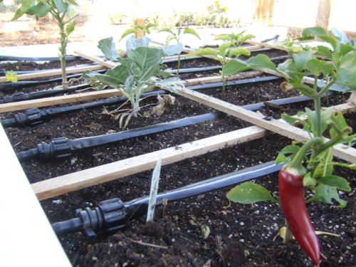 Ultimate Drip Irrigation System for Raised Bed Gardens- Simple-many Sizes Posible