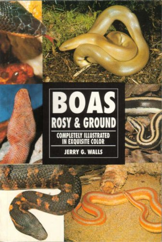 Boas Rosy & Ground