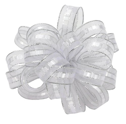 (Offray Ilissa Sheer and Satin Craft Ribbon, 5/8-Inch Wide by 25-Yard Spool, White/Silver)