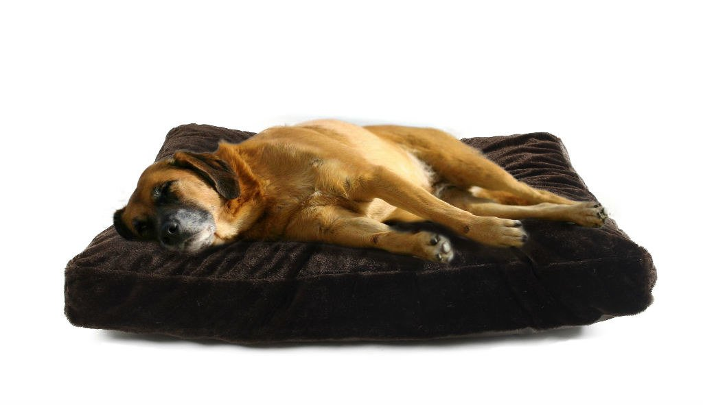 PV Fleece XL PV Fleece XL 4 Pets DIY Dog Cushion Cover Pet Mat Case Do It Yourself Coffee color PV Fleece XL by 4pets