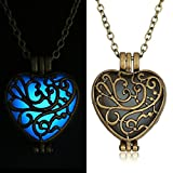 Dazzle Flash Vintage Brass Hollow Out Heart Glow In The Dark Magic Fairy Necklace N302-1