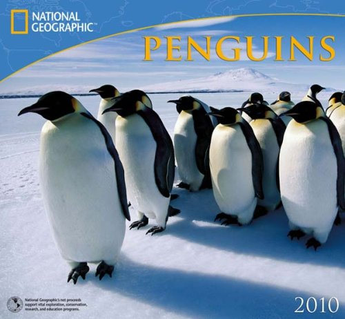 Penguins National Geographic 2010 Wall Calendar