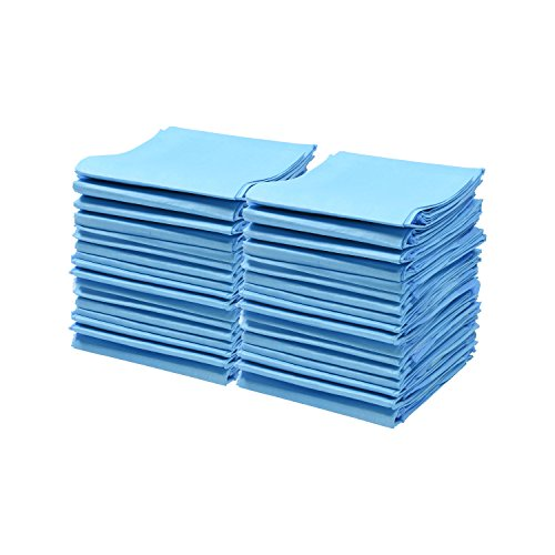 A World Of Deals Disposable Blue Underpad 23 X 36, (Woven Back Chairs)