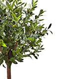 Nearly Natural 5960 4.5' Olive Topiary Tree with